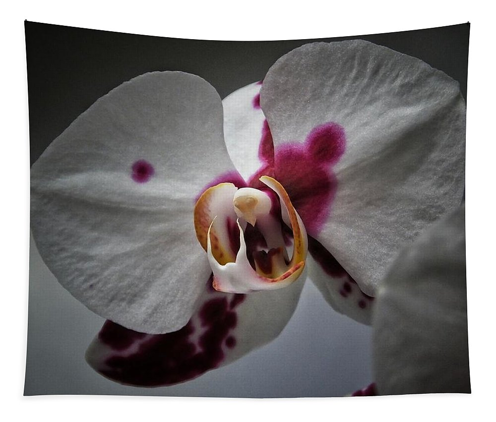 Nature Tapestry featuring the photograph My Growling Dragon Orchid. by Karen Stahlros