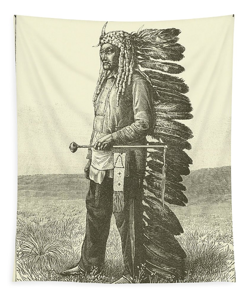 Feathers Tapestry featuring the drawing Native American by French School