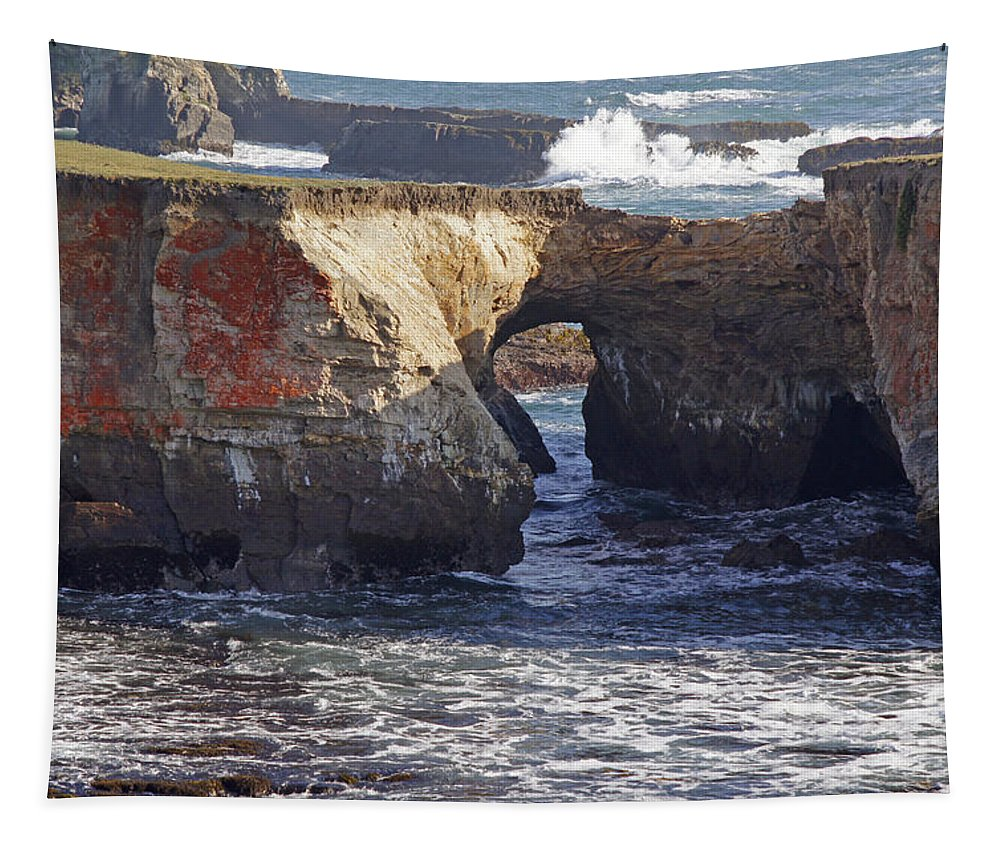 Highway 1 Tapestry featuring the photograph Natural Bridge At Point Arena by Mick Anderson