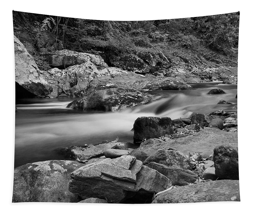 Natural Contrast Black And White Tapestry featuring the photograph Natural Contrast Black And White by Dan Sproul