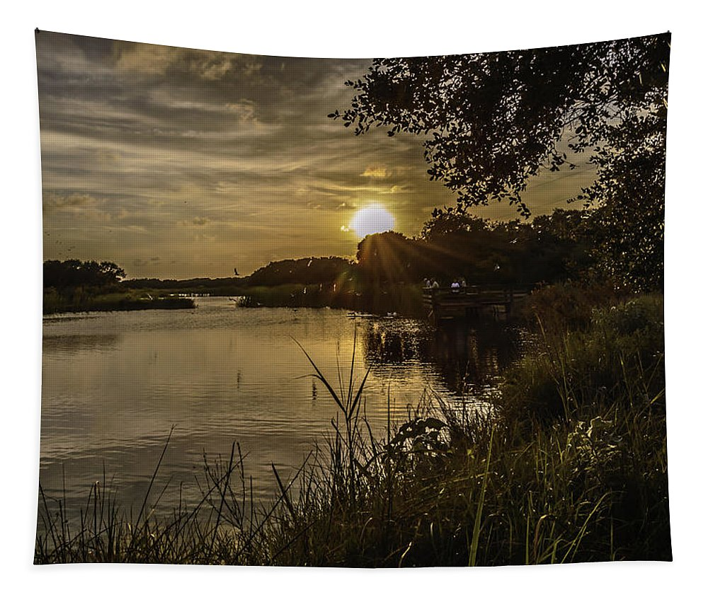 Pond Tapestry featuring the photograph Natural Spotlight by Leticia Latocki
