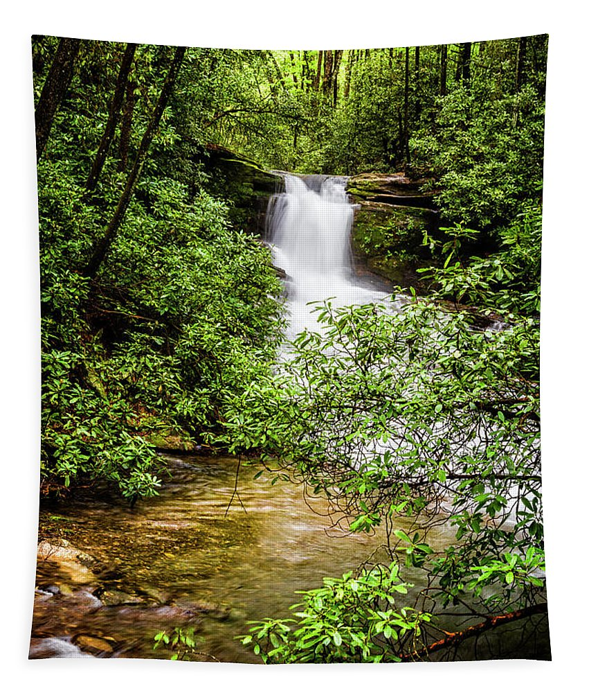 Appalachia Tapestry featuring the photograph Nature At Her Most Beautiful by Debra and Dave Vanderlaan