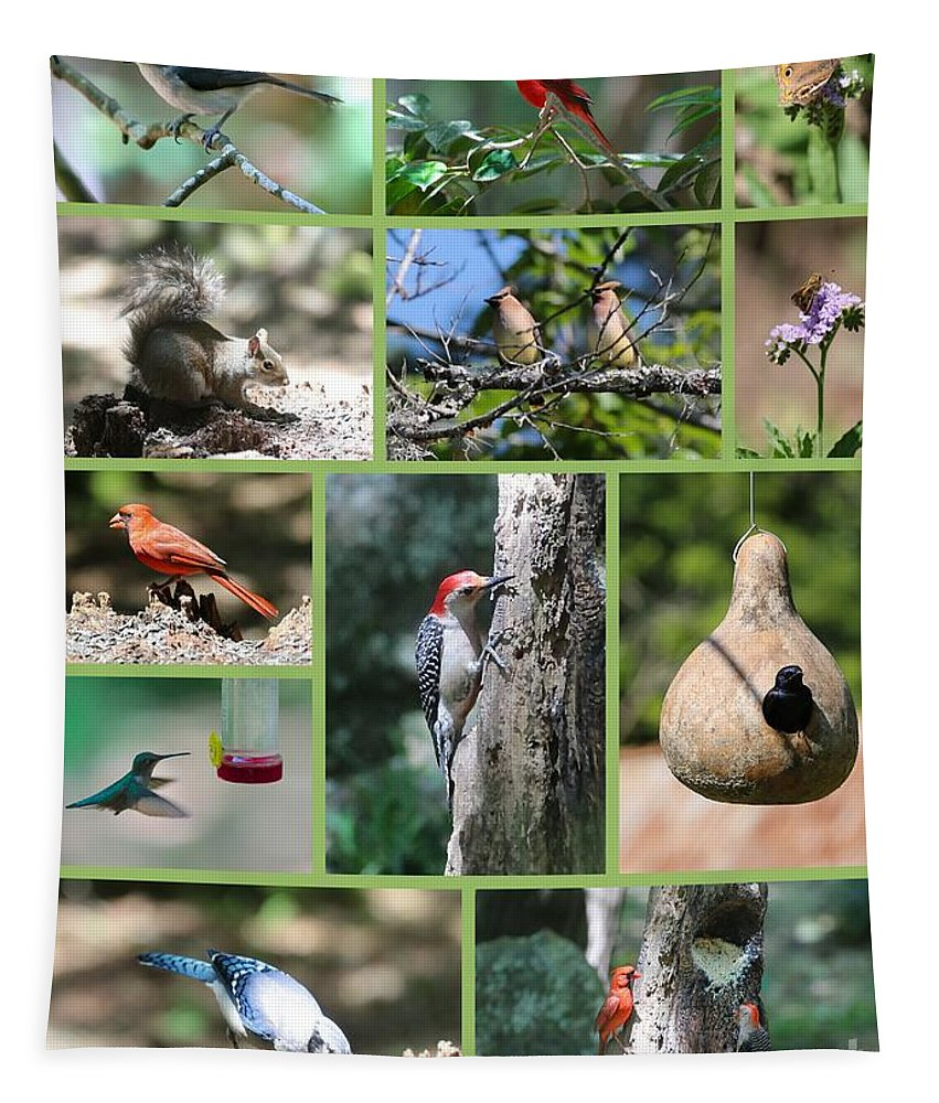 Bird Tapestry featuring the photograph Nature Collage by Carol Groenen