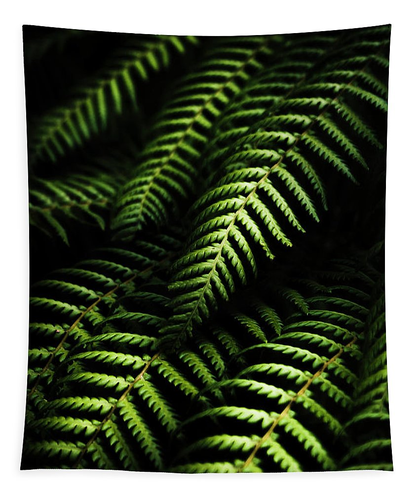 Tropical Tapestry featuring the photograph Nature In Minimalism by Jorgo Photography - Wall Art Gallery