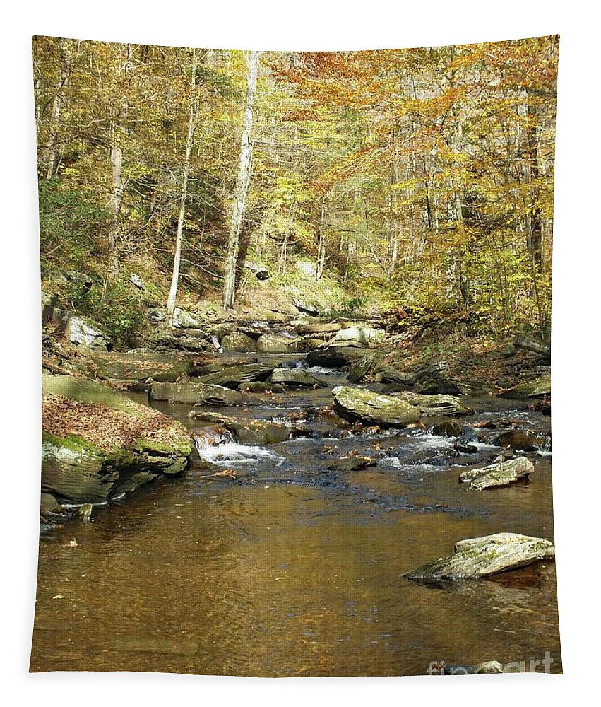 Ricketts Glen State Park Tapestry featuring the photograph Nature's Finest 5 - Ricketts Glen by Cindy Treger