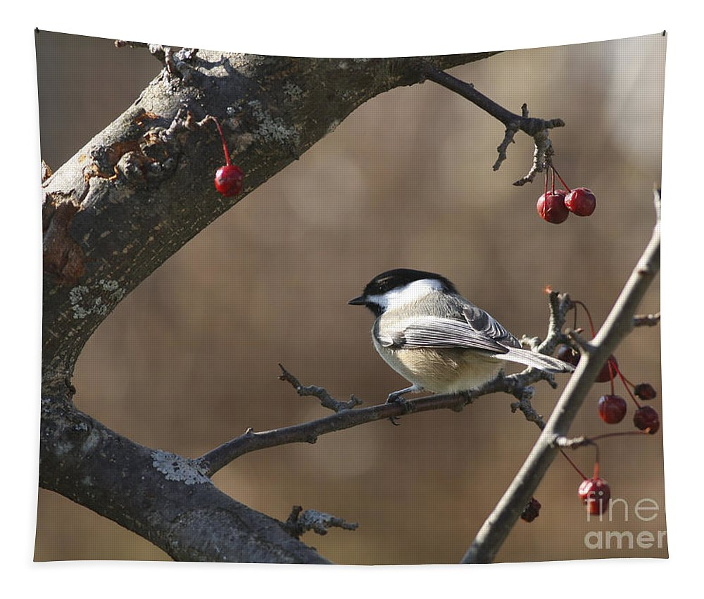 Bird Tapestry featuring the photograph Natures Small Wonders by Deborah Benoit