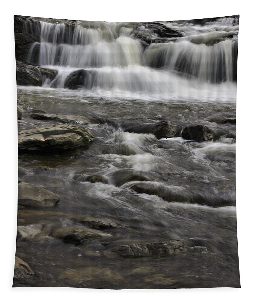 Brook Tapestry featuring the photograph Natures Water Beauty by Deborah Benoit