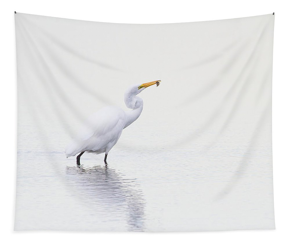 Egret Tapestry featuring the photograph Natures Way by Karol Livote