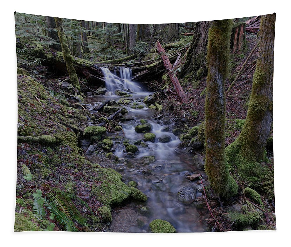 Water Tapestry featuring the photograph Near The End Of A Journey by Jeff Swan