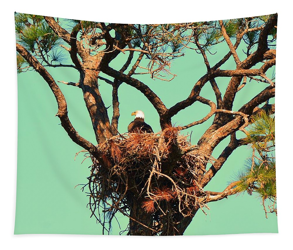 Nesting Bald Eagle Tapestry featuring the photograph Nesting Bald Eagle by Lisa Wooten