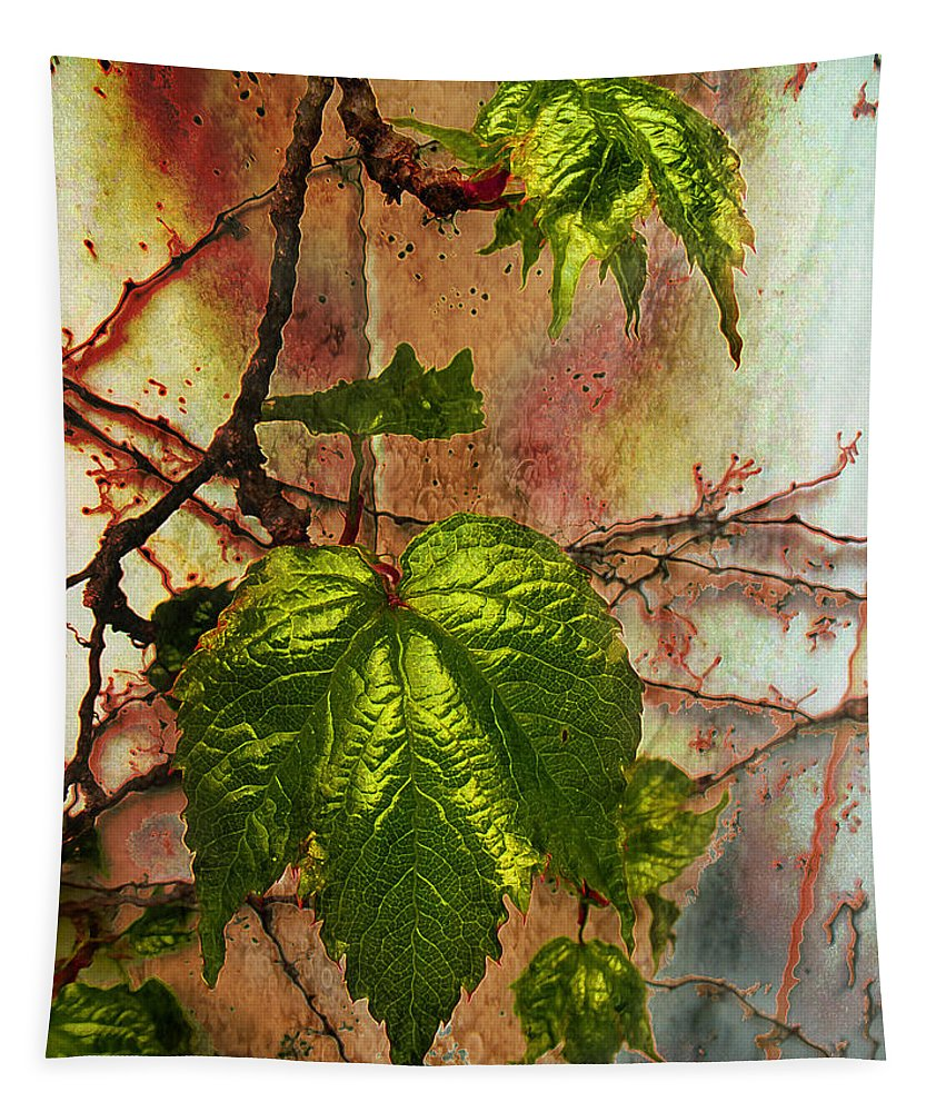Still Life Tapestry featuring the photograph New Faces by John Anderson