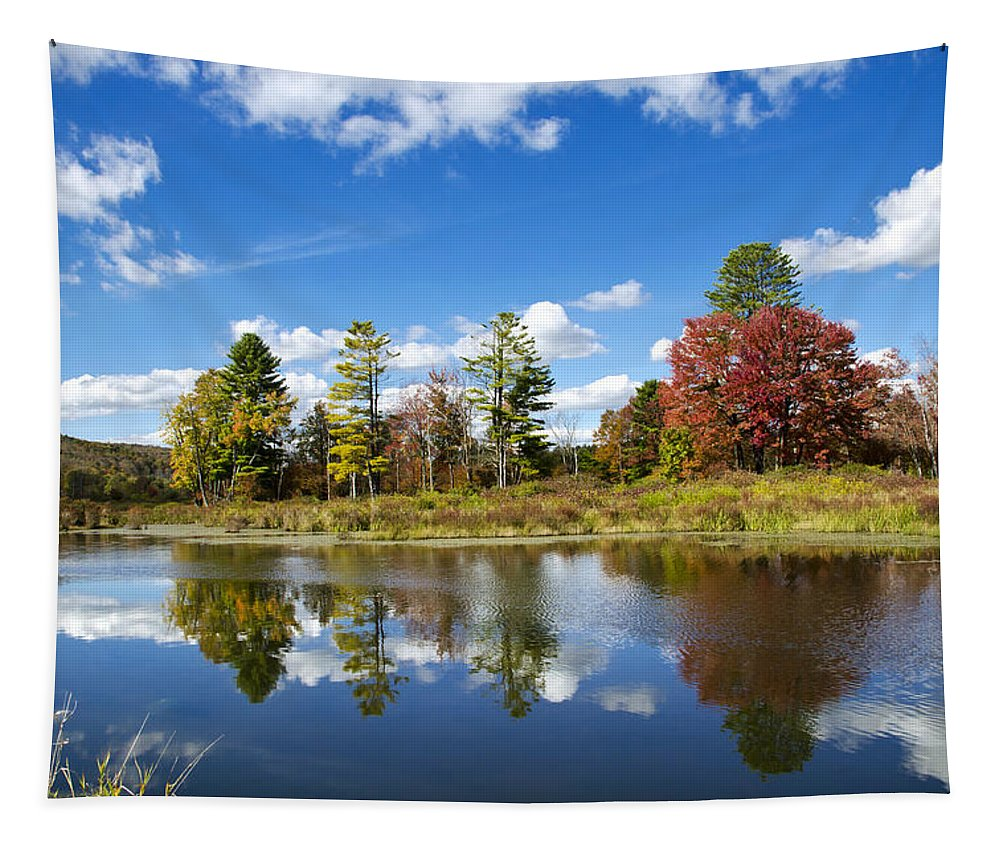 New York Tapestry featuring the photograph New York Autumn Landscape by Christina Rollo