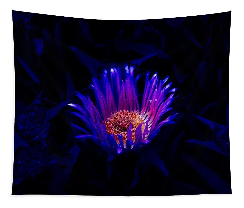 Flower Tapestry featuring the photograph Night Glow by Charleen Treasures
