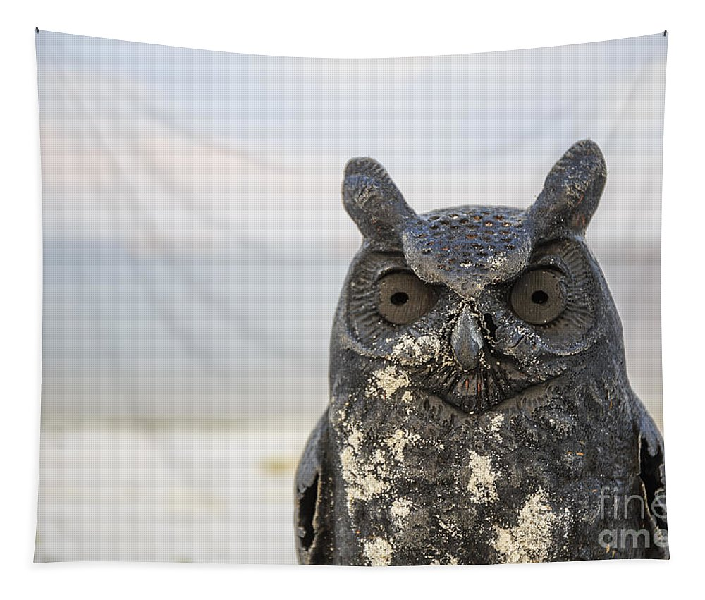 Night Tapestry featuring the photograph Night Owl by Edward Fielding