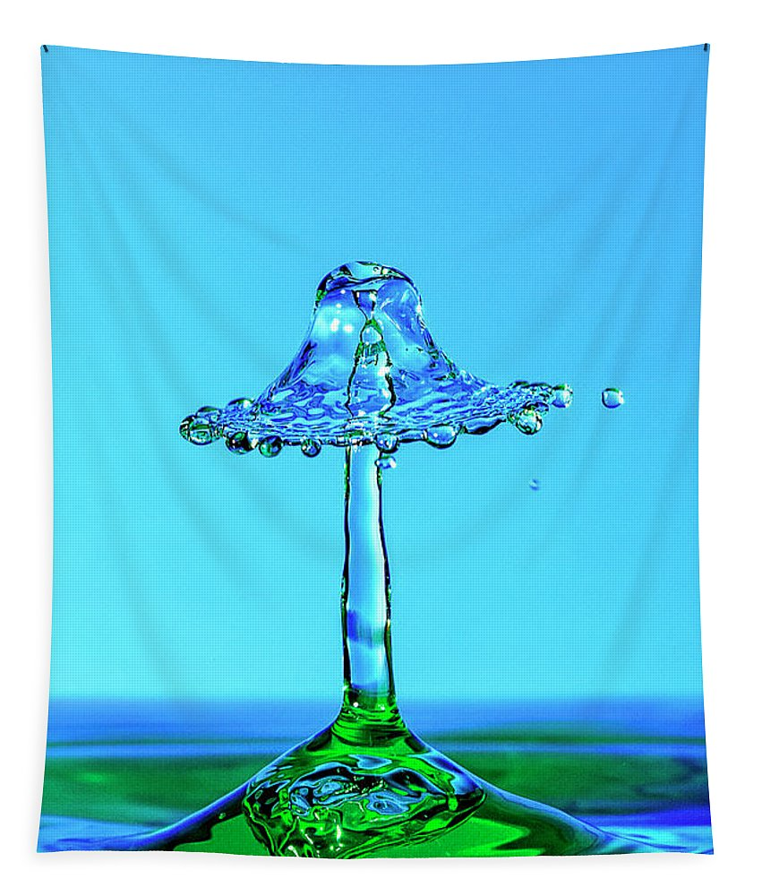 Nightshade Water Droplet Tapestry featuring the photograph Nightshade Water Droplet by Wes and Dotty Weber