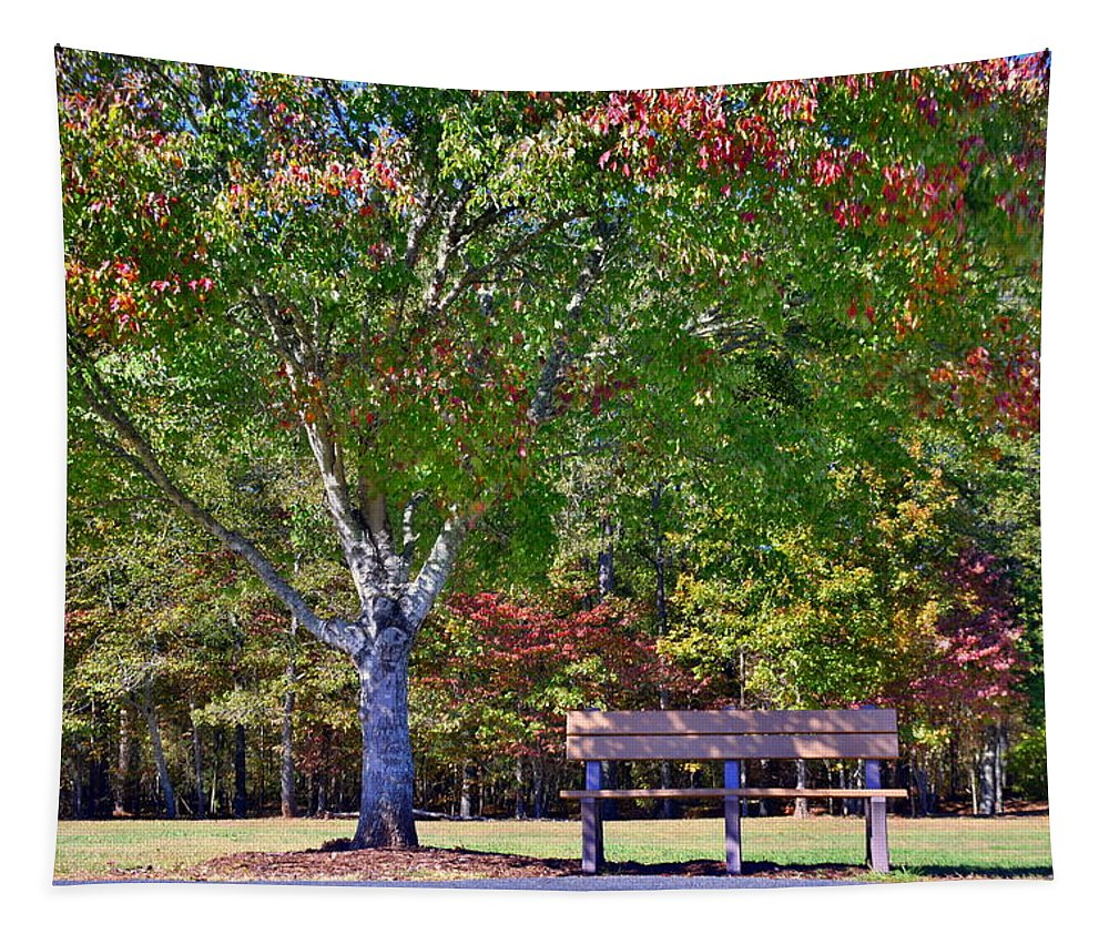 Ninety Six National Historic Site Bench In The Fall Tapestry featuring the photograph Ninety Six National Historic Site Bench In Autumn by Lisa Wooten