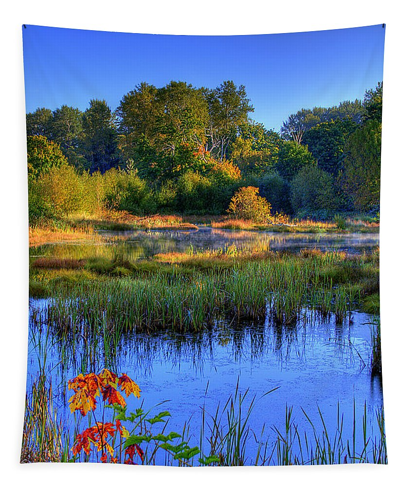Nisqually Tapestry featuring the photograph Nisqually Pond by David Patterson