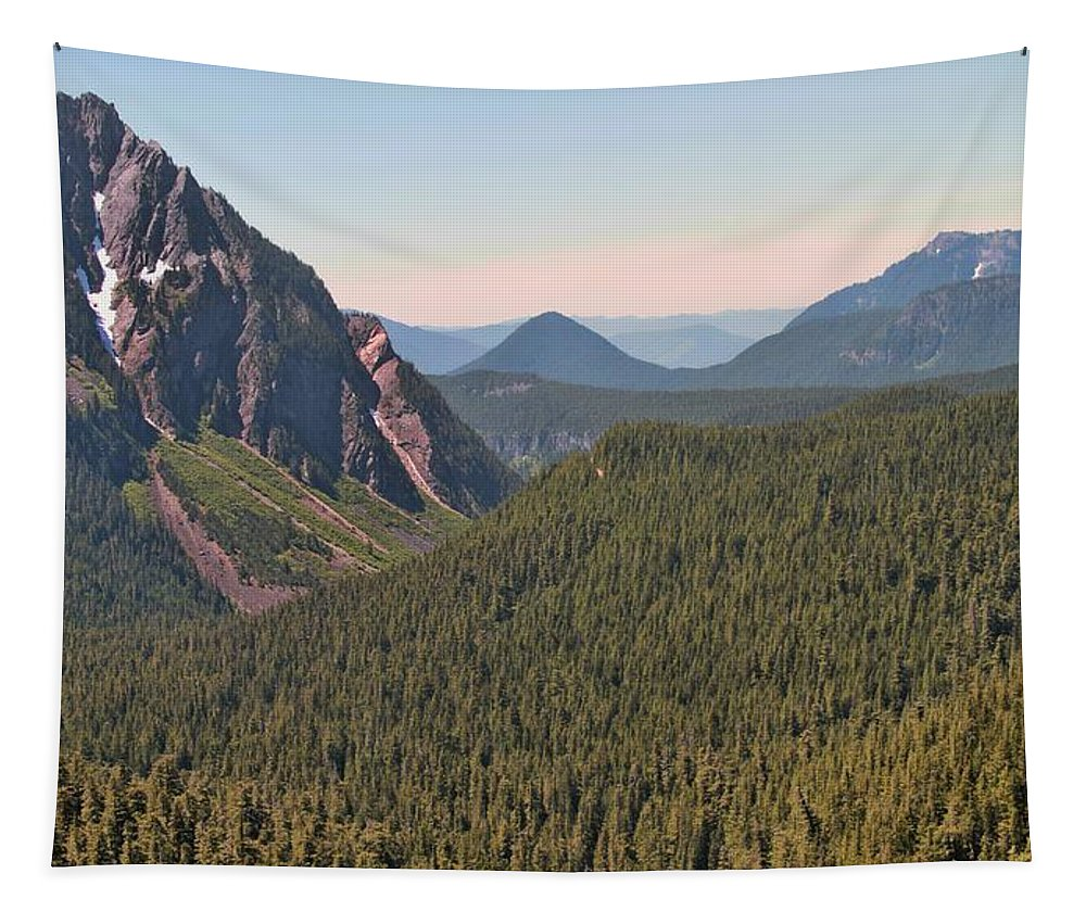 Nisqually Valley In Color Tapestry featuring the photograph Nisqually Valley In Color by Dan Sproul
