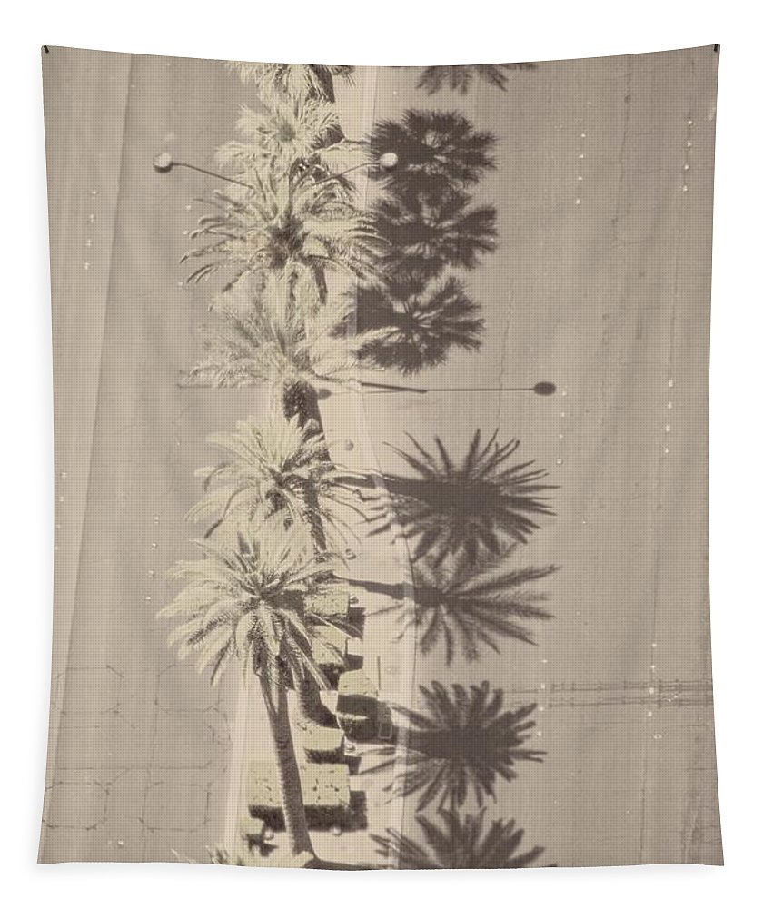 Alicegipsonphotographs Tapestry featuring the photograph Noon Palms by Alice Gipson