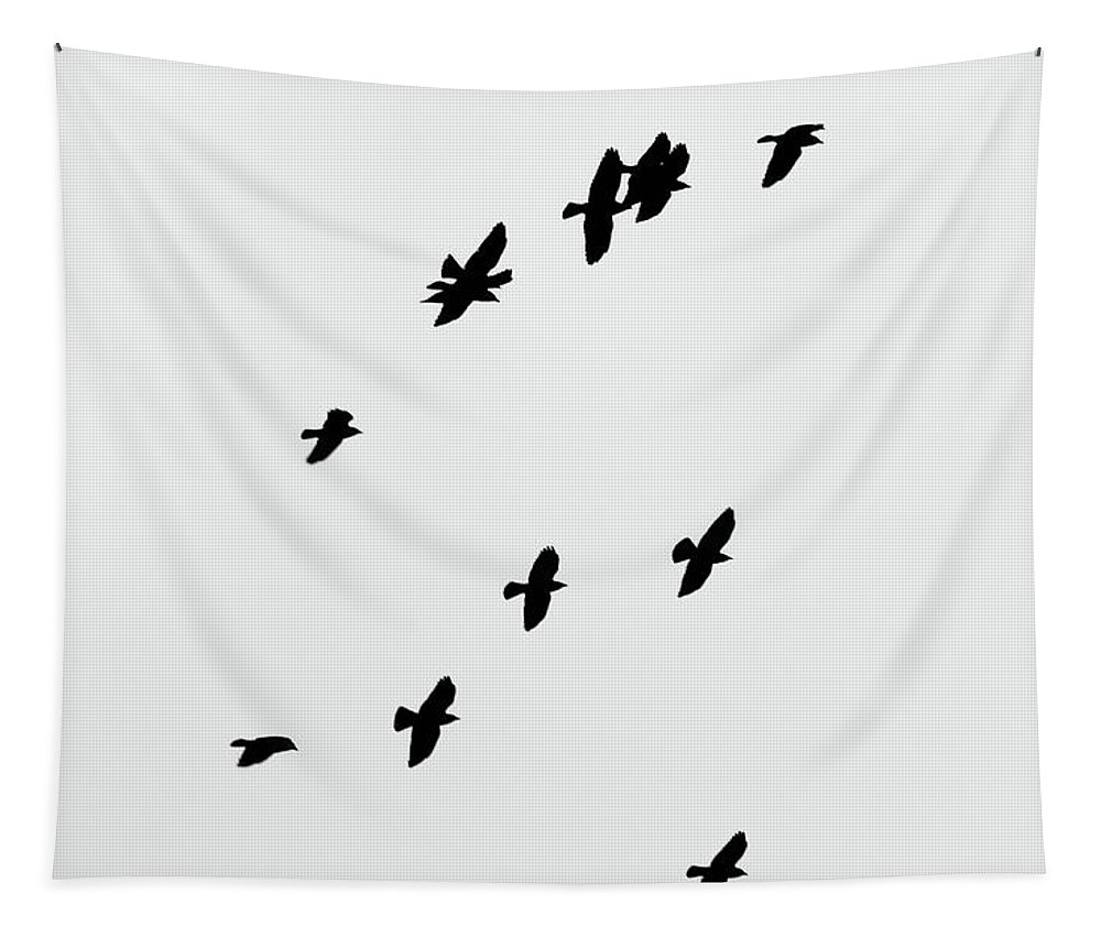 Crows Tapestry featuring the photograph North Flight by Philip Openshaw
