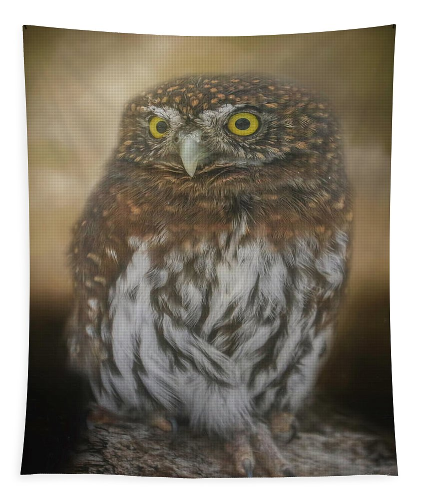 Owl Tapestry featuring the digital art Northern Pygmy Owl by Teresa Wilson