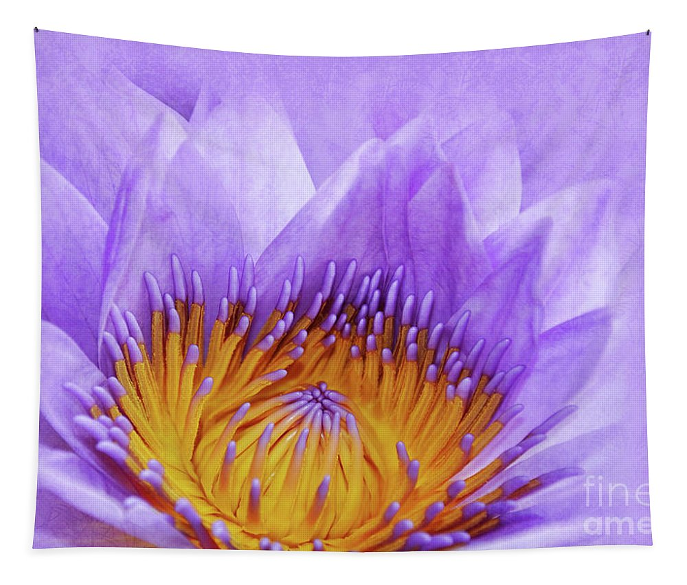 Water Lily Tapestry featuring the photograph Nymphea by Delphimages Photo Creations