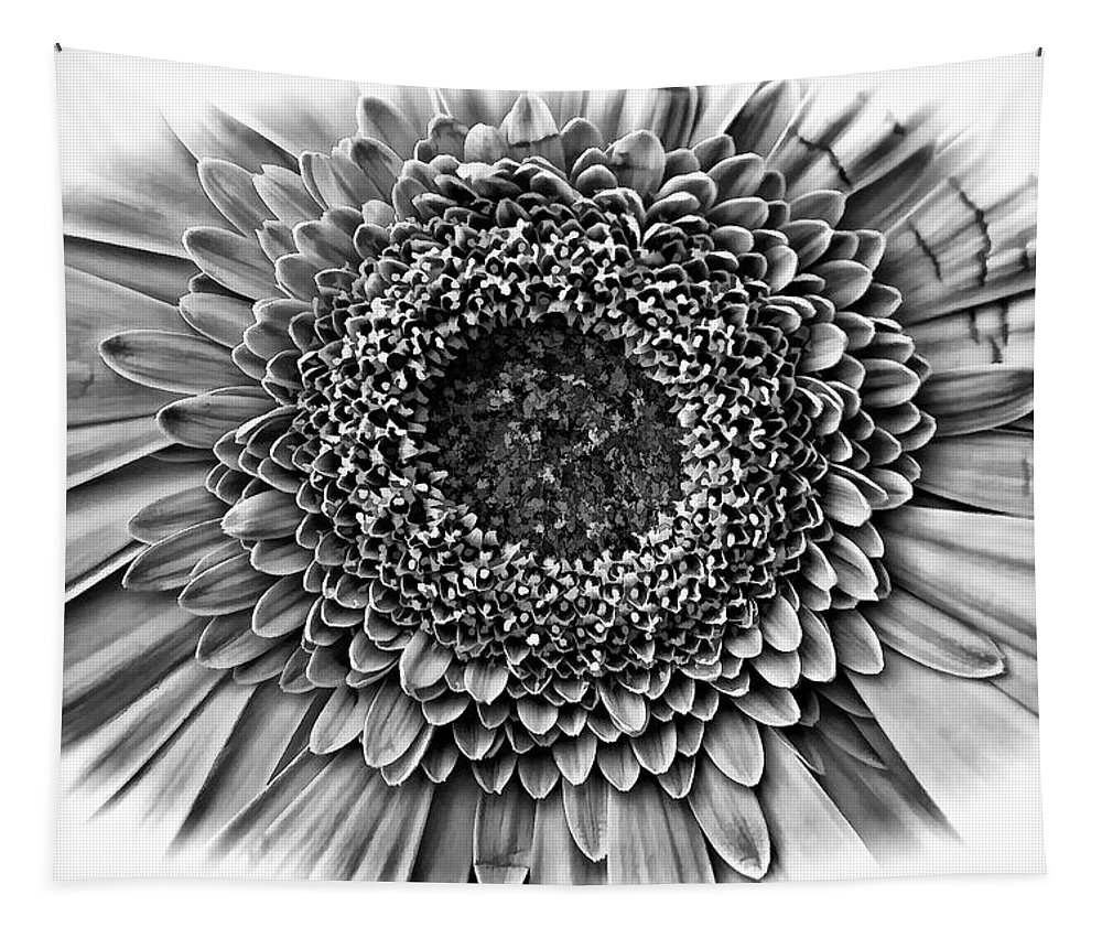 Flower Tapestry featuring the photograph O Bw by Steve Harrington