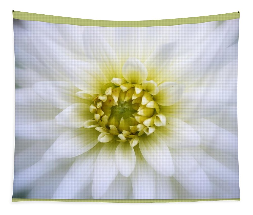 Green Tapestry featuring the photograph O-live by Linda Galok