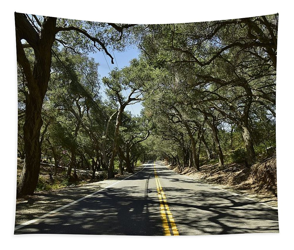 Linda Brody Tapestry featuring the photograph Oak Trees Along Live Oak Canyon Road by Linda Brody