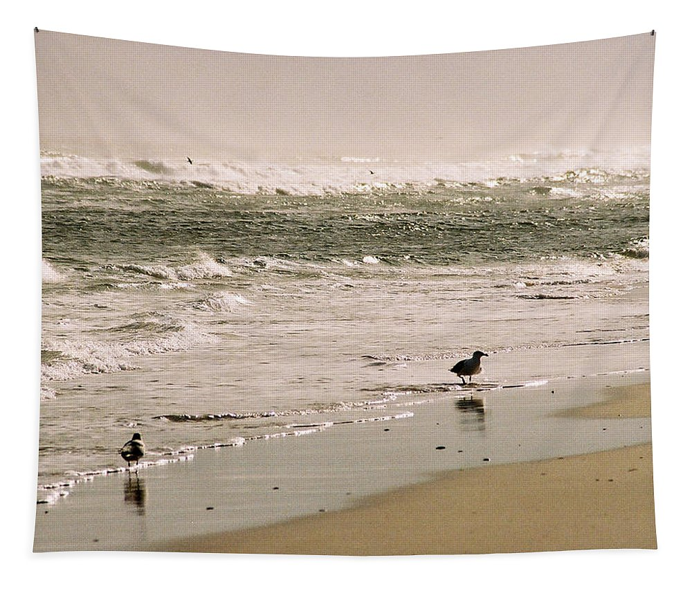 Seascape Tapestry featuring the photograph Ocean Edge by Steve Karol