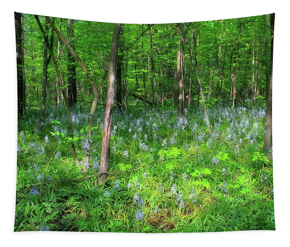 Ohio Wildflowers In Spring Tapestry featuring the photograph Ohio Wildflowers In Spring by Dan Sproul