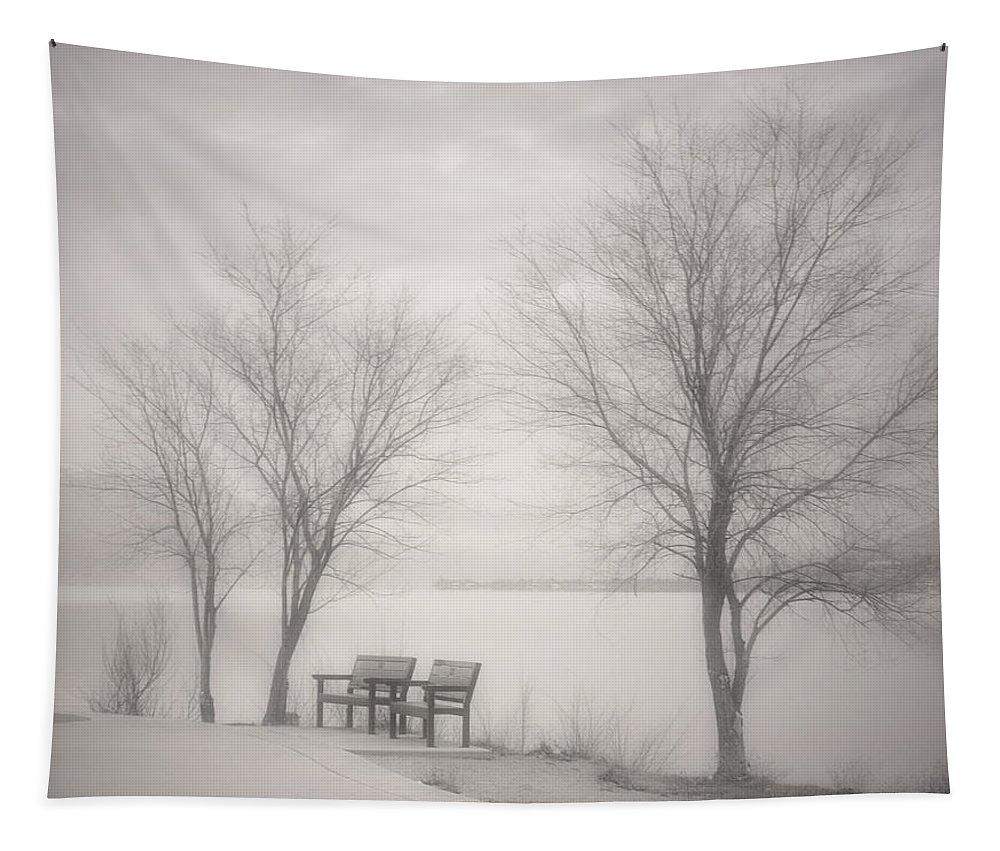 Black&white Tapestry featuring the photograph Okanagan Mist by Tara Turner