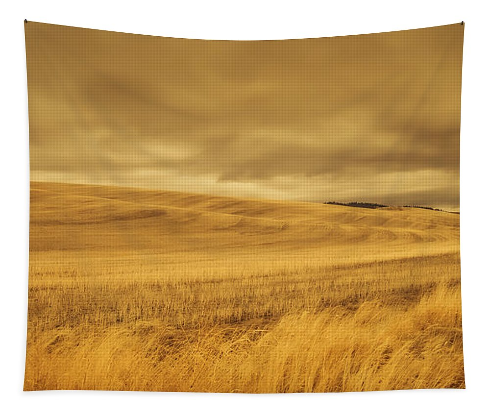 Farm Tapestry featuring the photograph Old Barn In The Wheat Field by Don Schwartz