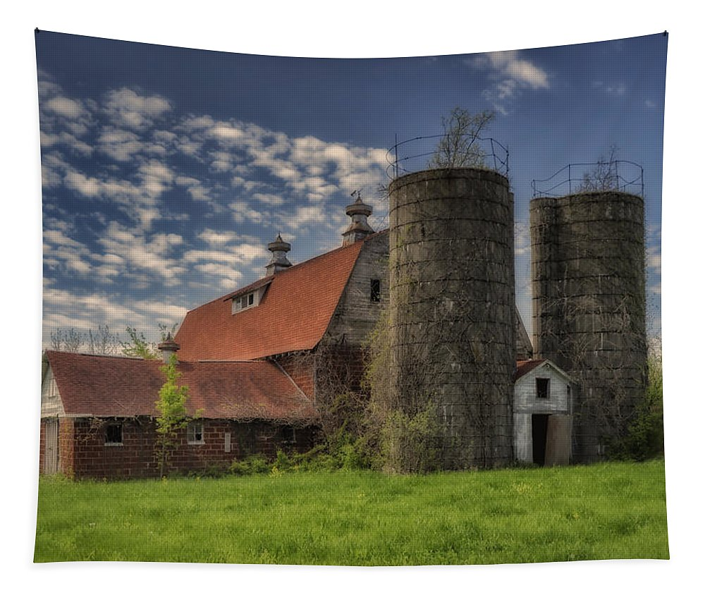 Rural Tapestry featuring the photograph Old Barn Near Sedalia Mo Dsc01900 by Greg Kluempers