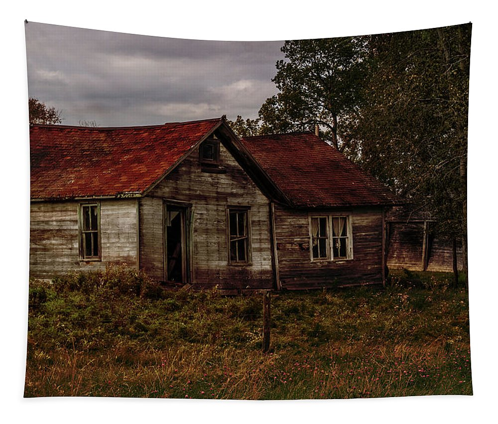 Old Tapestry featuring the photograph Old Forgotten Farmstead by Patti Deters