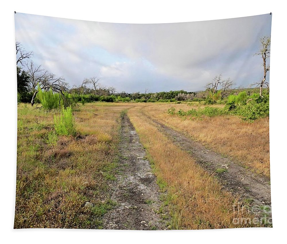 Texas Tapestry featuring the photograph Old Texas Roads by Gary Richards