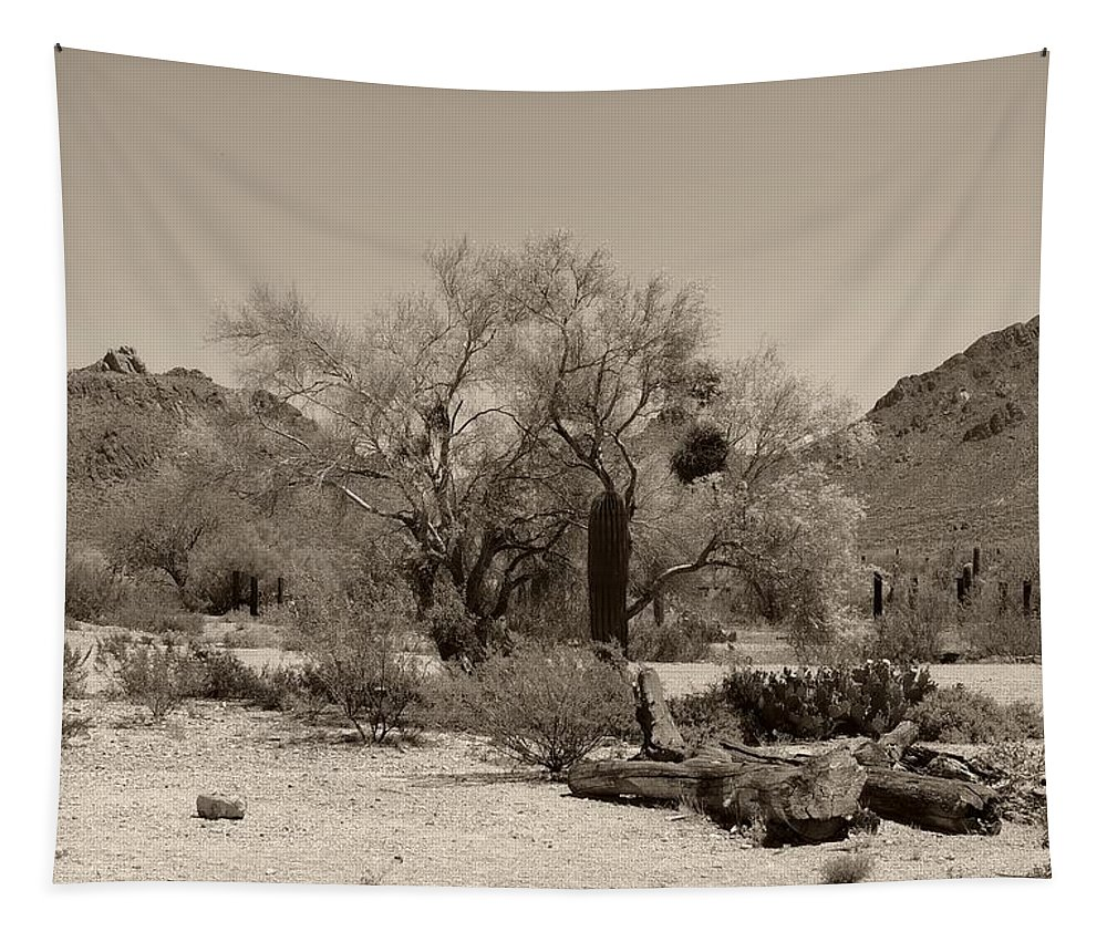 Old Tapestry featuring the photograph Old Tucson Landscape by Gordon Beck