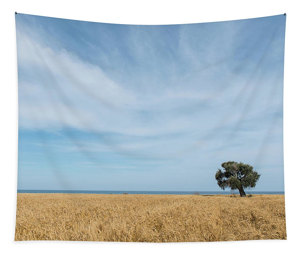 Olive Tree Tapestry featuring the photograph Olive Tree On The Wheat Field by Michalakis Ppalis