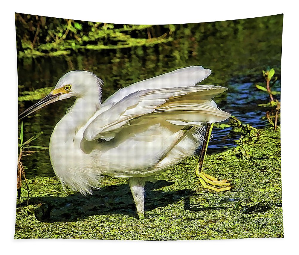 Snowy Egret Tapestry featuring the photograph On A Mission by HH Photography of Florida