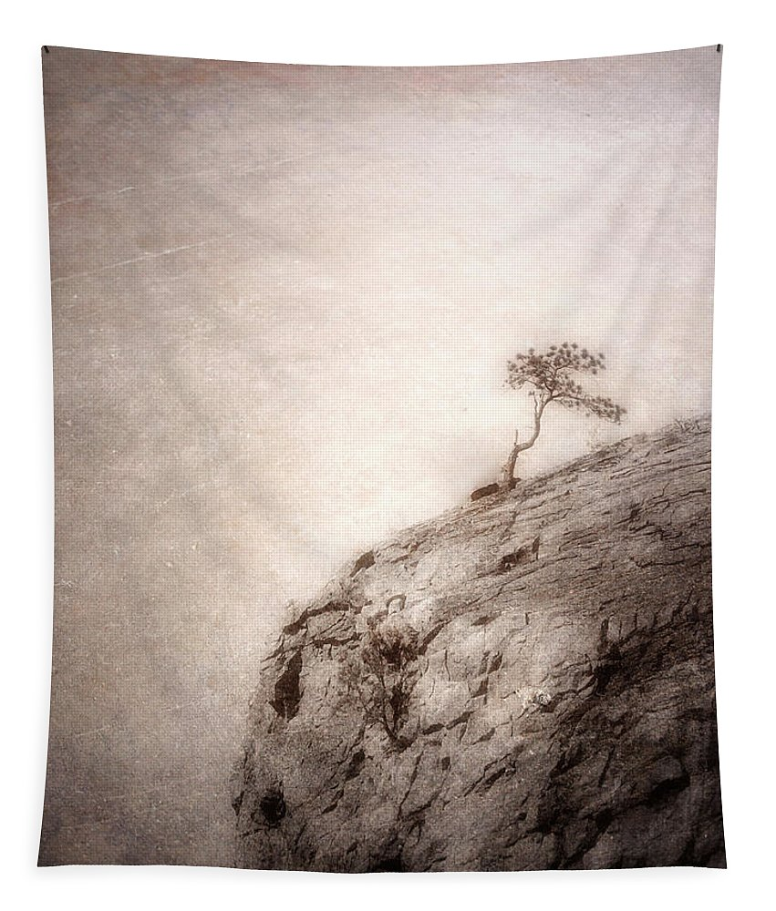 Tree Tapestry featuring the photograph On Edge by Tara Turner