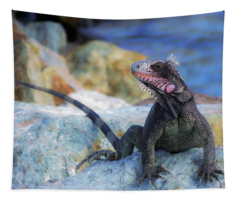 Iguana Tapestry featuring the photograph On The Prowl by Karen Wiles