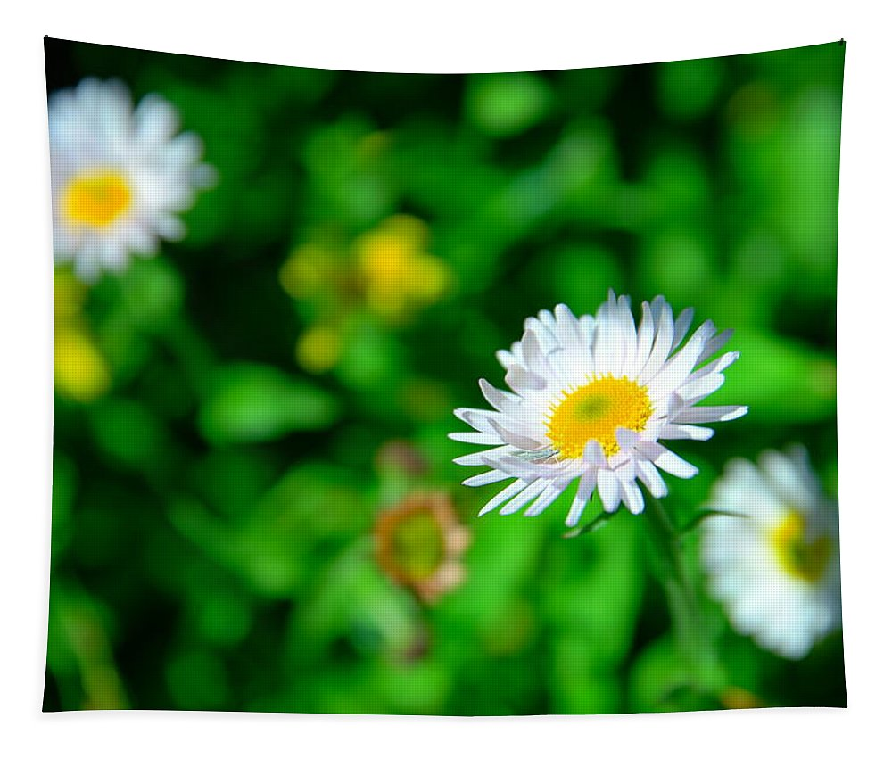 Flowers Tapestry featuring the photograph One Little Wildflower by Jeff Swan