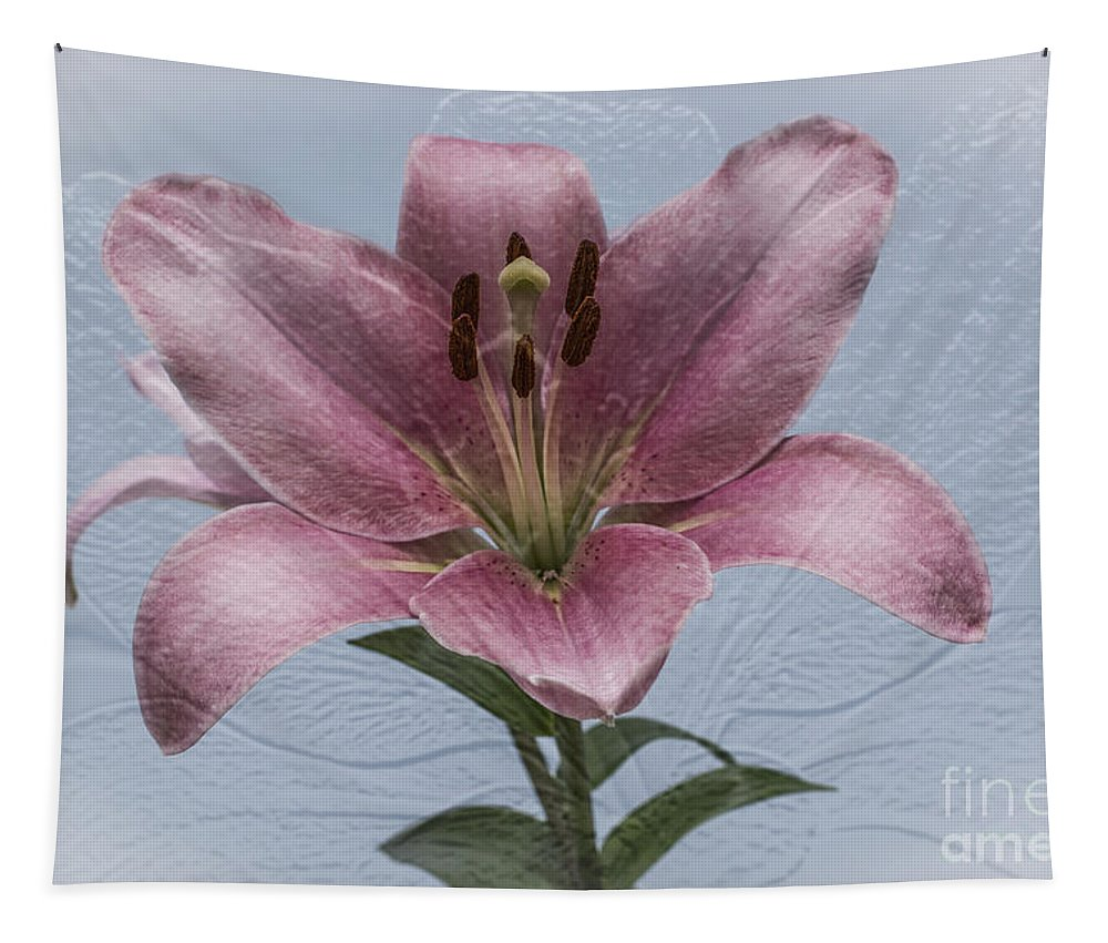 Pink Lilies Tapestry featuring the photograph One Love by Steve Purnell