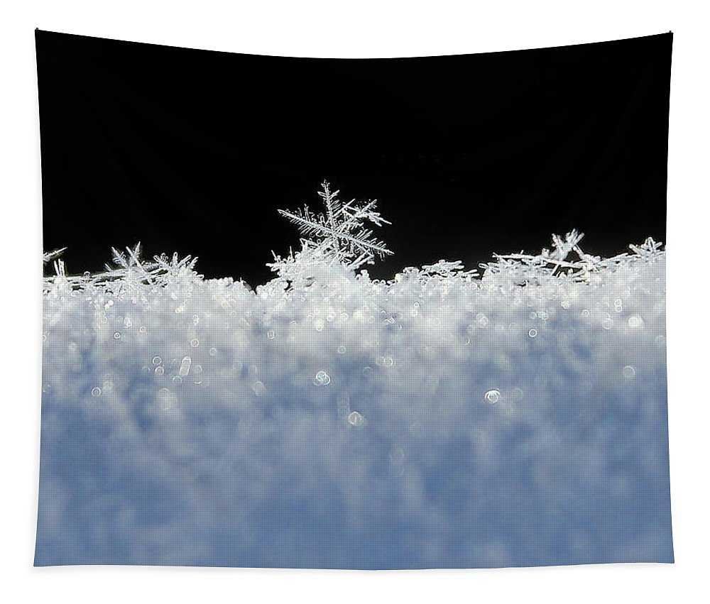 Snow Tapestry featuring the photograph One Of A Kind by Penny Meyers