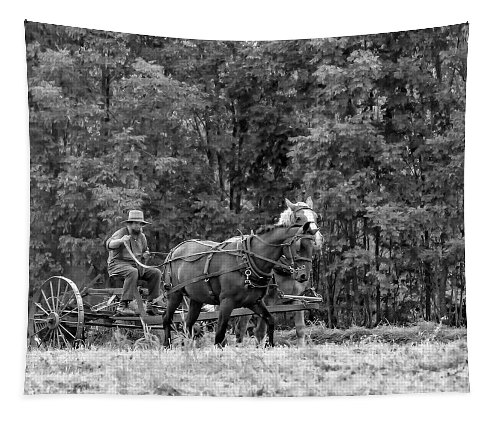 Ontario Tapestry featuring the photograph One With The Land - Bw by Steve Harrington