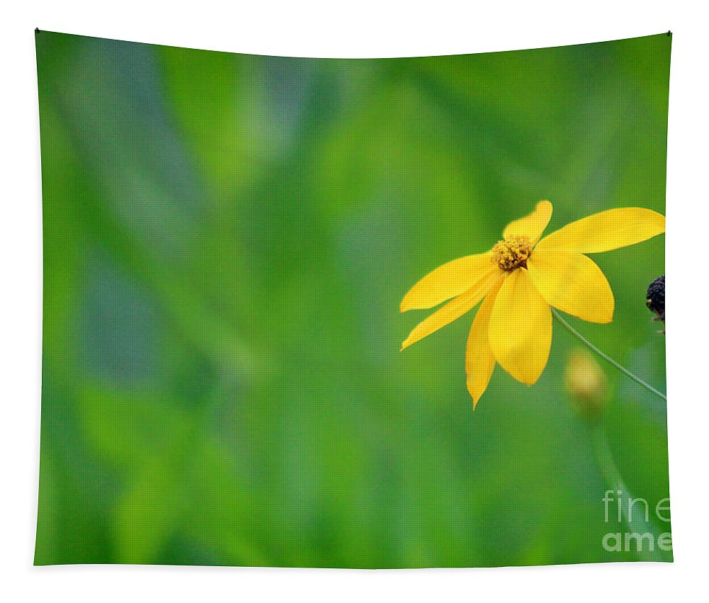 Adams Tapestry featuring the photograph One Yellow Coreopsis Flower by Karen Adams