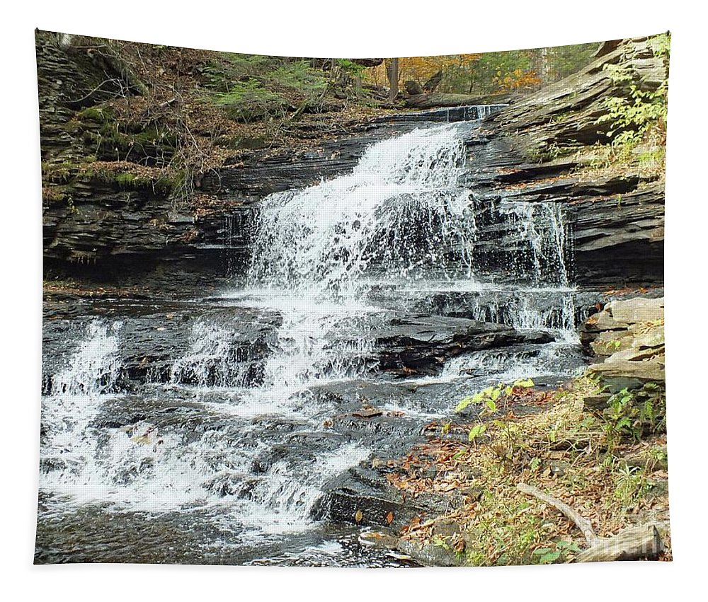 Onondaga Tapestry featuring the photograph Onondaga 6 - Ricketts Glen by Cindy Treger
