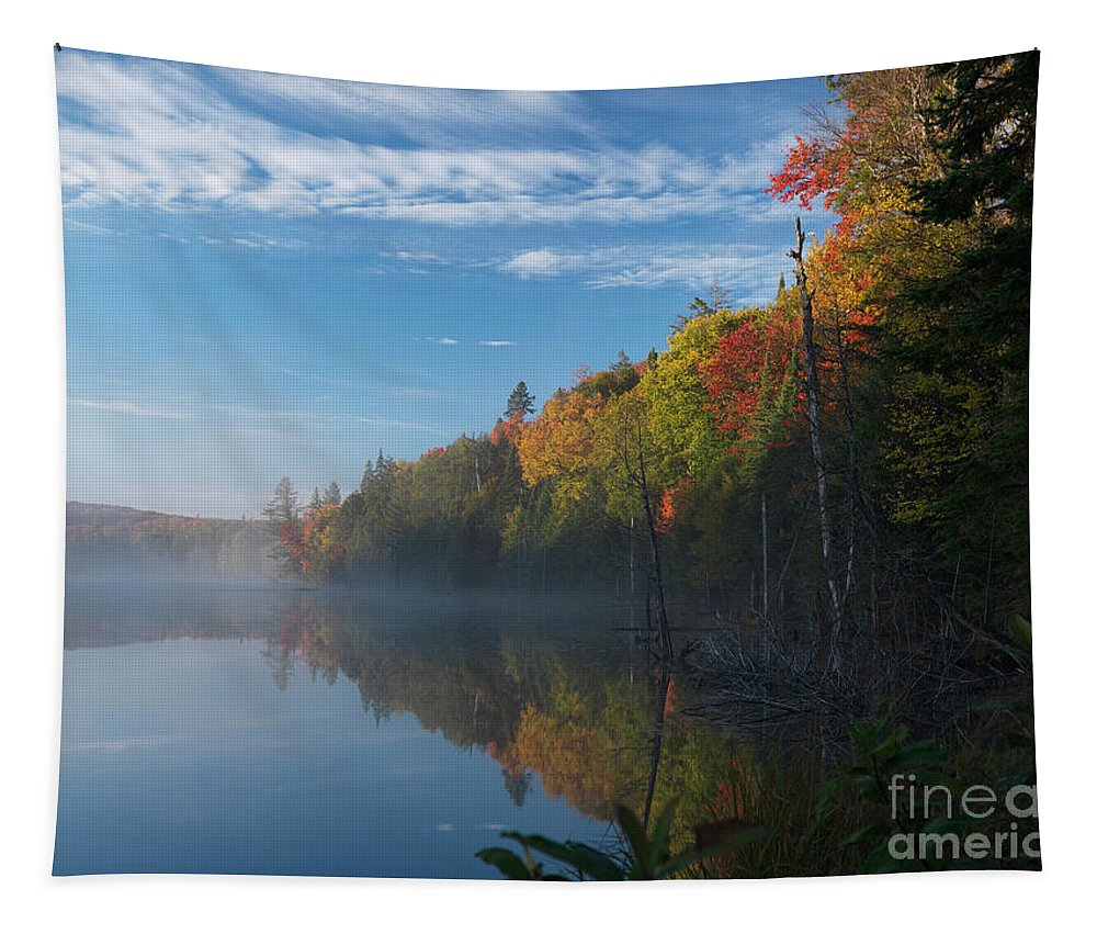 Lake Tapestry featuring the photograph Ontario Autumn Scenery by Oleksiy Maksymenko