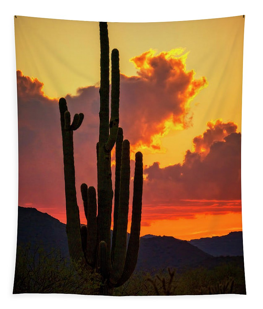 Saguaro Sunset Tapestry featuring the photograph Orange Beautiful Sunset by Saija Lehtonen