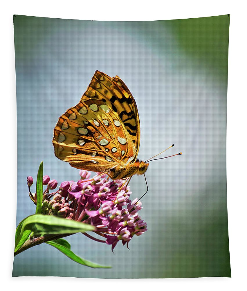 Butterfly Tapestry featuring the photograph Orange Butterfly by Christina Rollo